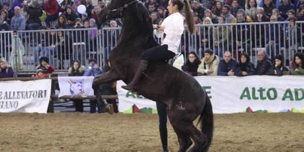 Fiera di Verona 2016 – presentazione di Nobilissimo con la giovane Claudia