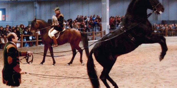 Fieracavalli di Verona 2006